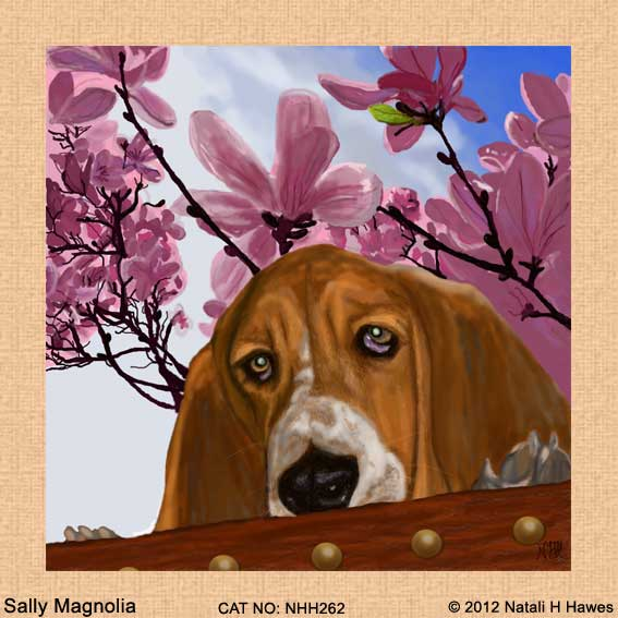 Sally Magnolia by Nat H H
